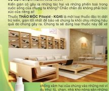 Thuốc diệt kiến Pitoxid – KG45 (200ml)